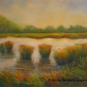 In de polder te koop