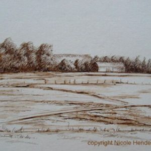 boerderij in de polder
