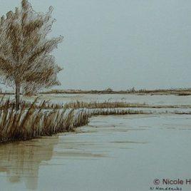 Tekening in de polder