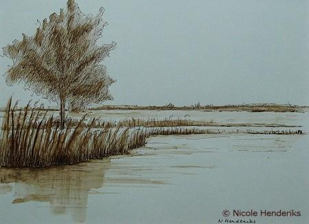 in de polder kreek
