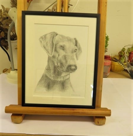 opdracht portret hond