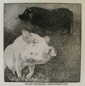 ets varkens