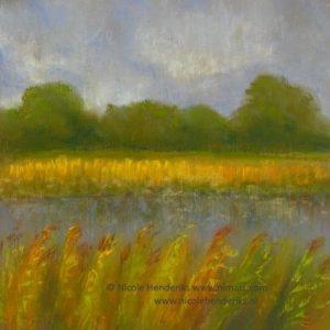 polder landschap