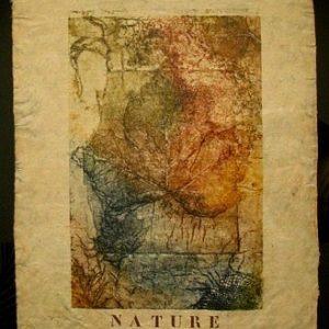 Nature unica te koop ingelijst 60x80cm