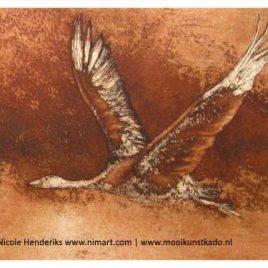 kunstkaart vogel
