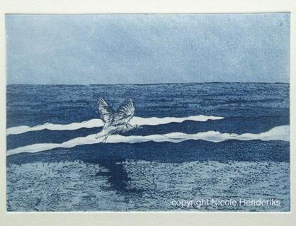 vogel over zee