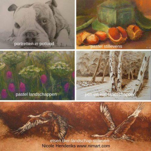 webshop met Nicole Henderiks  haar tekeningen, schilderijen in pastel, inkt en acryl naar landschap, stilleven, natuur en dier