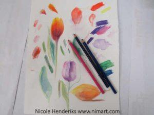 Nieuw Tekenen met kleurpotlood, een stilleven of bloem naar waarneming VG-86